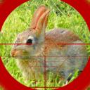猎兔狙击手