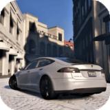 特斯拉驾驶模器安卓版