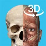 Hago人体解剖学图谱安卓版